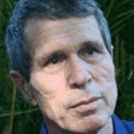 Martin Kari